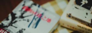 Narrativa japonesa en línea